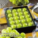 シャインマスカット ジュエルセレクション 岡山県産 特秀 3Lサイズ 20粒 送料無料 葡萄 ぶどう ブドウ