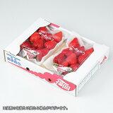 あまおう  福岡県産 デラックス DX 大粒 7〜11粒  約300g×2パック 送料無料 ギフト 苺 いちご