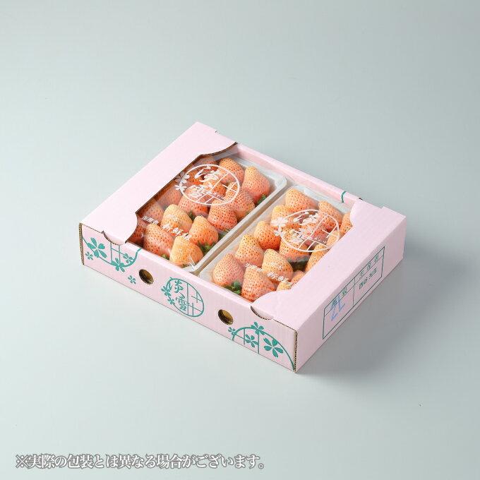 熊本県産 白いちご 『淡雪』(あわゆき) 赤秀 大粒 3L〜2Lサイズ(約270g×2パック) お歳暮 冬ギフト