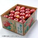 りんご 葉とらず太陽ふじりんご 青森県産 JAつがる弘前 糖...