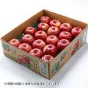 りんご葉とらず太陽ふじりんご 青森県産 JAつがる弘前 糖度...