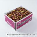パープルクイーン和歌山県産JA紀南 秀品 Lサイズ 約1kg梅小梅送料無料