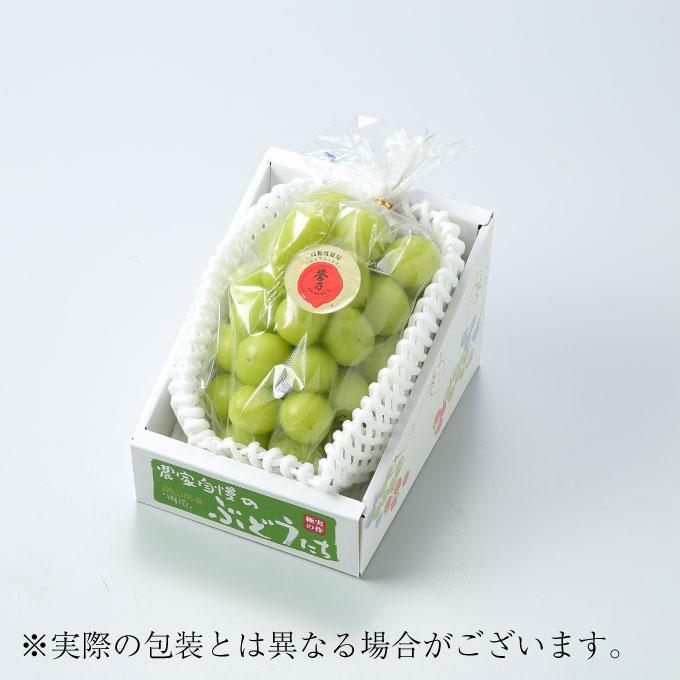 フルーツ・果物, ブドウ  AKASAKA JA 800g 1