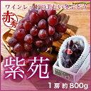 紫苑 しえん 岡山県産 JAおかやま 赤秀 1房 約800g  送料無料 贈り物 ギフト 葡萄 ぶどう ブドウ