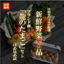 【目利きのプロが厳選した】使いやすい定番野菜 おまかせ7品セ