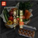 【目利きのプロが厳選した】使いやすい定番野菜 おまかせ15品
