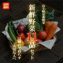【目利きのプロが厳選した】使いやすい定番野菜 おまかせ11品