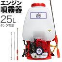 エンジン式 噴霧器 背負式 噴霧器 動噴 動力噴霧機 エンジン 25Lタンク 噴霧機 除草剤 ピストンポンプ 2サイクル HG-768背負式 噴霧器 セット動噴 防除機 動力噴霧器 2スト