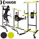 ぶら下がり健康器 自重トレーニング 筋トレ HG-P1001