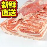 白金豚バラブロック1000g 【送料無料】 銘柄豚 ブランド豚 豚肉 ぶた肉 ブタ肉 岩手県産 プラチナポーク お取り寄せ グルメ 花巻 バラ 塊肉 かたまり肉 贈答 贈り物