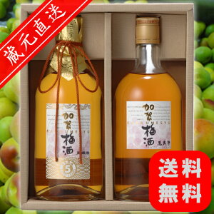 【父の日まだ間に合います!】【着後レビューで送料無料】ただでさえ美味しい加賀梅酒と熟成で...