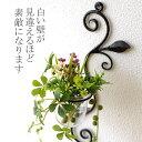 花瓶 壁掛け ガラス 一輪挿し 花器 おしゃれ ガラスベース カップ アイアン シンプル かわいい 壁飾り インテリア 壁掛けフラワーベース・ミニの写真