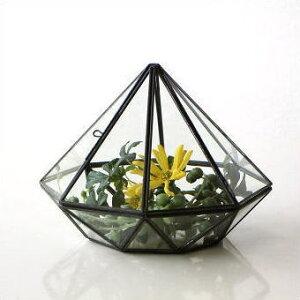 ガラス テラリウム 小物入れ アイアン 観葉植物 多肉植物 サボテン 観賞 ディスプレイ かわ…