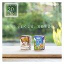 白水舎宮崎平野の牛乳とカフェ・オーレ30本入