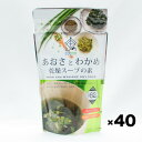 沖縄産 あおさとわかめ 乾燥スープの素(業務用)62g×40個入|送料無料 1