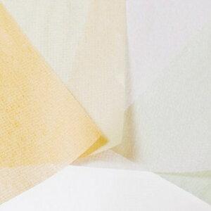 【あぶらとり紙アロエ(30枚入)】あぶらとり紙金沢化粧直しメイク直し箔座HAKUZA