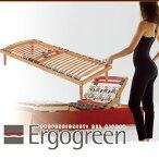 Ergogreen(エルゴグリーン)Evolution(エボリューション)ダブルフレーム(D)【イタリア製】【送料無料】