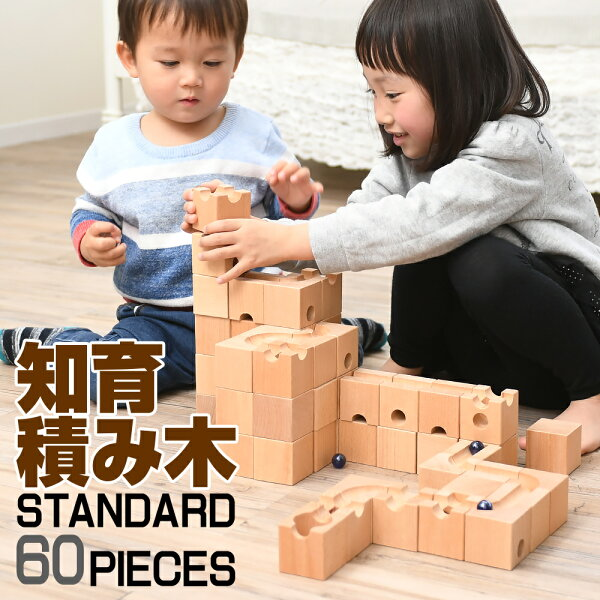 5冠達 積み木知育玩具つみき木製正方形ブロック迷路ビー玉転がし出産祝い卒園入学入園お祝い幼稚園保育園プレゼントピタゴラスイ