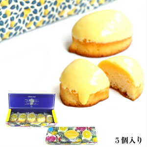 れもんケーキ 5個入 あんでる船 宮崎 名産品 洋菓子 手土産 おやつ デザート 国産レモン 宮崎産 お祝い 記念品 土産 ギフト プレゼント