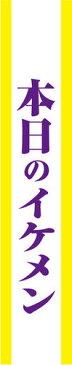 【メール便対応1個まで】宴会タスキ 本日のイケメン タスキ 宴会グッズ