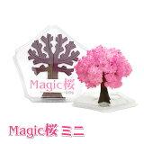 【メール便対応3個まで】Magic桜ミニ マジックさくらミニ パーティーグッズ 雑貨 まじっくさくら プチギフト