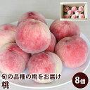 【クール便】 長野県産 須高の桃 約2.5キロ 8個入り も