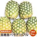 業務用訳あり高糖度パイナップル 5個 5キロ以上 【送料無料】【5kg以上】送料無料