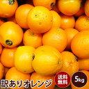 【アメリカ産】訳ありオレンジ 大特価送料無料 訳あり ギフト 果物 フルーツ