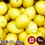【チリ産】訳あり レモン 大特価送料無料 訳あり ギフト 果物 フルーツ