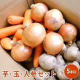 芋・玉・人参セット 5キロ野菜 じゃがいも にんじん たまねぎ セット 男爵 北海道北見産 煮物 カレー 野菜セット