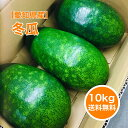 【静岡産】10kg 冬瓜 3玉入 まるごと とうがん おいしい 産地 ス……