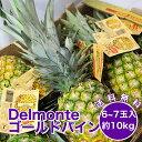 【フィリピン産】デルモンテ ゴールデンパイン 10kg 6〜