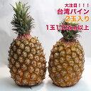 【台湾産】台湾パイン 2入り 箱売り 芯まで食べられる パインアップル パインケーキ pineapple pine 甘い 果物 フルーツ