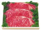 【冷凍】飛騨牛サーロインステーキ用3枚600gギフト贈答