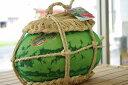 入善ジャンボ西瓜通販 富山県黒部俵スイカを販売。日本一の大きさをお中元に 1玉 約14kg〜約20kg