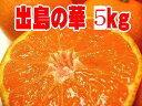 驚きの★糖度14度以上!長崎高級ブランドみかん♪出島の華【長崎産】約5k「S〜2S」