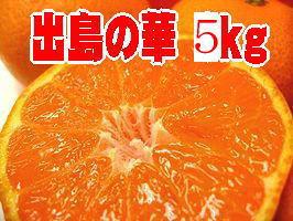 驚きの★糖度14度以上!長崎高級ブランドみかん♪出島の華【長崎産】約5k「S~2S」