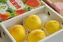 父の日の桃♪黄美娘(きみこ)黄色い桃です! 化粧箱4玉〜6玉【山梨産】