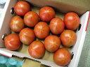 アメーラトマト【高糖度とまと】 静岡産及び長野産