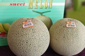旭村クインシーメロン通販 茨城産 糖度の見えるメロンを販売。果物ギフトに 糖度14度 秀品 2玉