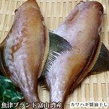 【魚津ブランド・富山湾産】カワハギ醤油干し(ウマヅラハギ/200g)