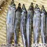 【富山湾産・無添加】ニギス干物(200g/17〜18尾入※小さ目)
