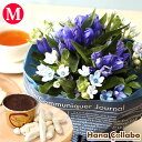 花束 季節の誕生日花セット(Mサイズ)誕生日プレゼント 9月 女性 女友達 母 妻への贈り物 花とスイーツセット ヒマワリ 生花 結婚祝い あす楽 AA