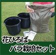 初心者向け♪バラ鉢植え栽培セット【資材】
