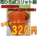 花ひろばスリット鉢茶240