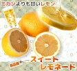 オレンジ 苗木 【 スイートレモネード 】 2年生 接ぎ木 柑橘 果樹 果樹苗木