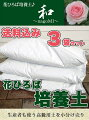 高級培養度「和み」3袋セット【送料無料】