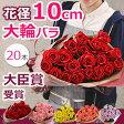 バラの花束 誕生日 結婚記念日のプレゼントに花束を妻へ。ホワイトデーのお返し 退職祝い プロポーズにも。大輪の薔薇(ばら バラ)花束を還暦祝いのギフトに 送料無料(20本〜)