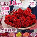 結婚記念日 バラの花束 誕生日 妻 プレゼント 大輪!長もち!いい夫婦の日 プロポーズに還薔薇を 本数指定(20本?)