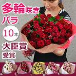 藤野さんのスプレーバラ・ファンシーローラ(10本)の花束